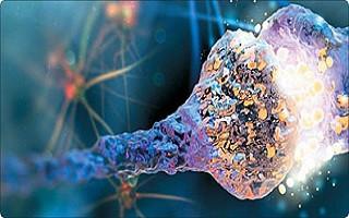 سیناپس ابررسانا قطعه احتمالی گمشده در مغز مصنوعی