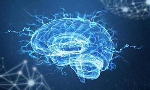 سلولهای مغز کنترل میشود