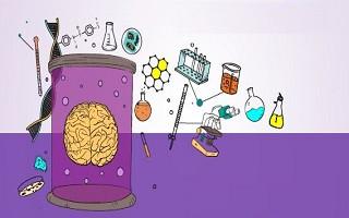ارتقای توانمندیهای دانشآموزان برتر کشور در حوزه نقشهبرداری مغز