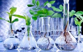 بررسی آمادهسازی محیط کشتهای پایه و آنتیبیوتیکها در پژوهشگاه زیستفناوری