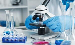 تخفیف عیدانه خدمات دستگاه BET آزمایشگاه تحقیقاتی نانو مواد معدنی پردیس علوم دانشگاه تهران