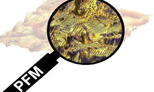 انواع پیشرفته میکروسکوپ نیروی پاسخ پیزو، محدویت ها و راه کارهای آن
