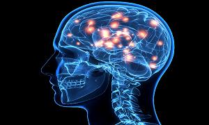 هفتهای همراه با آگاهی از مغز در پایان سال