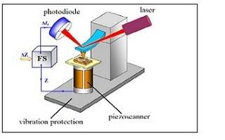 برگزاری کارگاه تئوری و عملی مبانی میکروسکوپ نیروی اتمی
