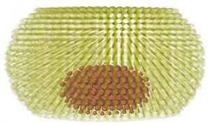 ساخت لیزر با استفاده از نقاط کوانتومی بشقابی شکل