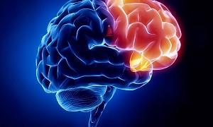 راهاندازی کلینیک اختلالات شناخت و حافظه در سرتاسر کشور