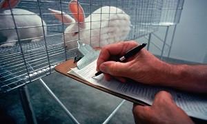 امکان سنجی احداث مرکز ملی پرورش حیوانات آزمایشگاهی در دانشگاه آزاد ارومیه