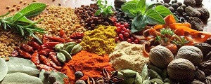 ششمین کنگره ملی گیاهان دارویی برگزار میشود