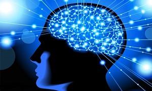 طراحی و ساخت سیستم هشت کاناله برای ثبت سیگنالهای مغزی در کشور