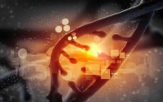 ارائه خدمات ارزیابی زیستسازگاری برای محصولات پزشکی