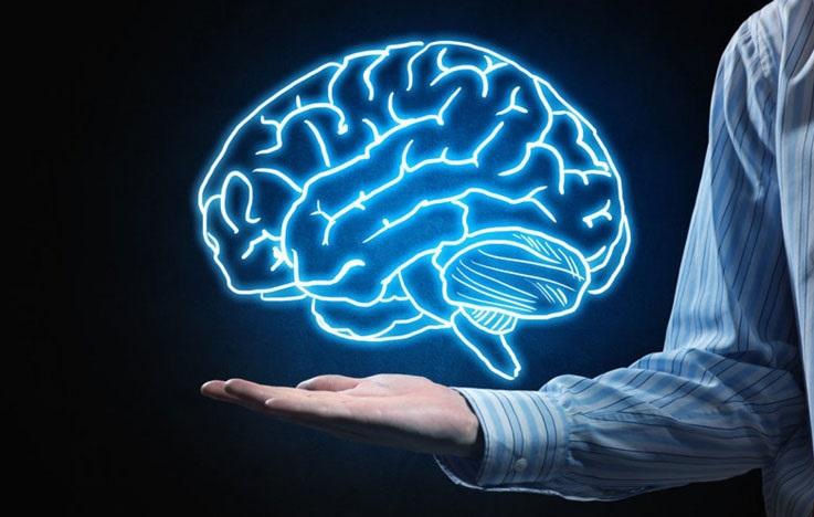 علوم شناختی جلسه با شکبه راهبردی