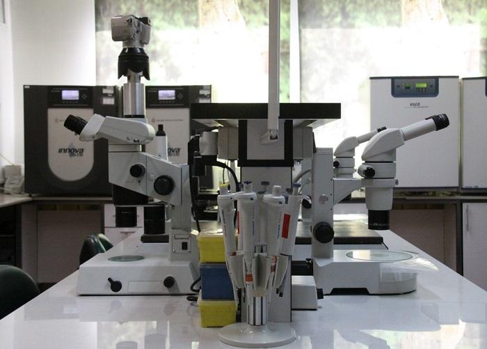 رشد چشمگیر خدمات آزمایشگاهی در سال 98، ماحصل راهبردهای توسعه کسبوکار