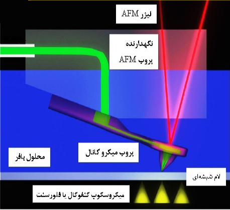 اصول و عملکرد میکروسکوپ نیروی اتمی سیالی